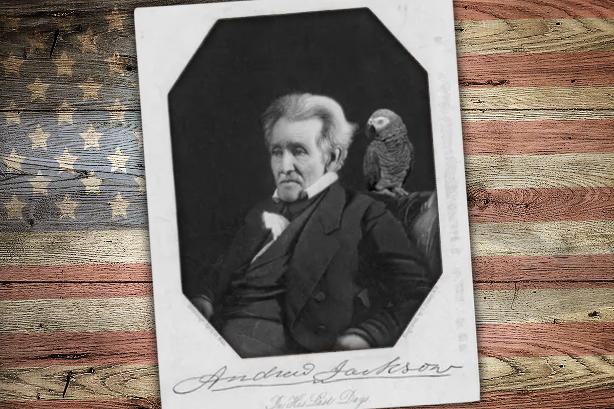 Andrew Jackson's swearing parrot